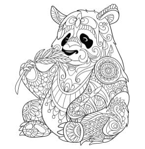 Panda Coloring Pages Hard Coloring for Adults