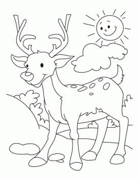 Deer Coloring Pages Online Cartoon Deer Drawing for Toddler
