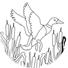 Duck Coloring Pages A Duck Flying across a Pond