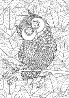 Owl Adult Coloring Pages 3iu7