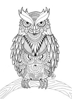 Owl Coloring Pages for Grown Ups Free to Print hw75