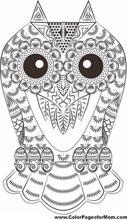 Printable Owl Coloring Pages for Grown Ups eo83
