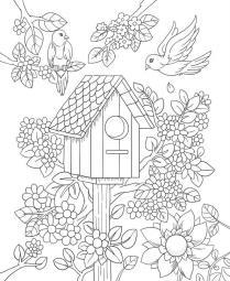 Spring Coloring Pages Printable for Adults Birdhouse in Flower Garden