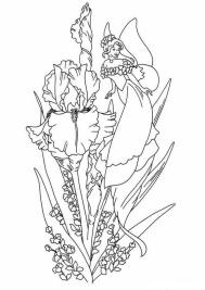 Coloring Pages for Teenage Girl to Print Spring Fairy
