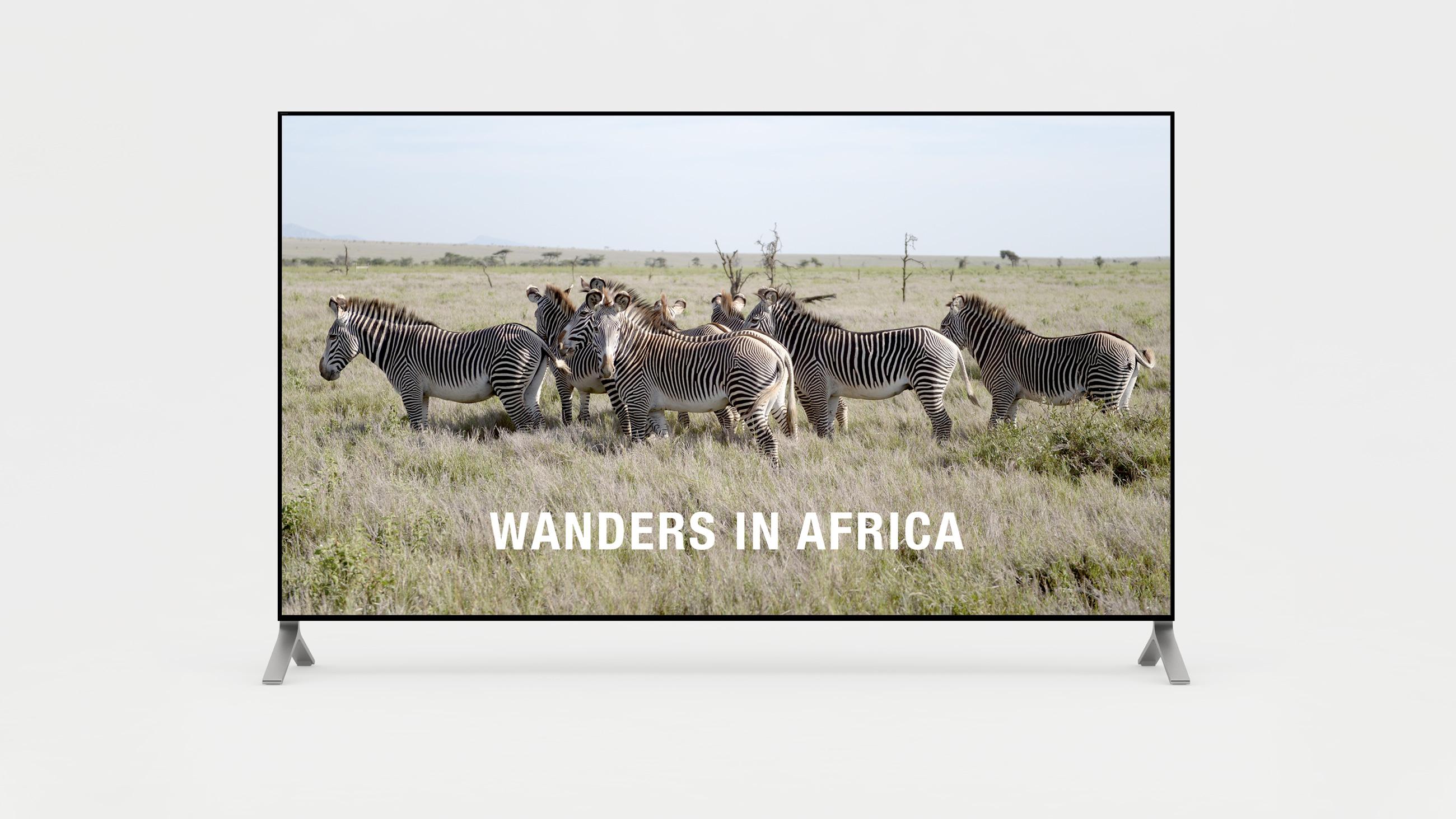 Short film of wanders in Africa