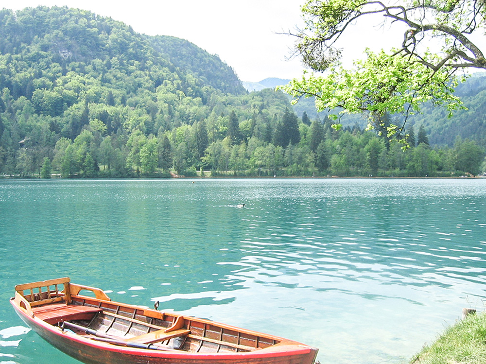 Rowboat in Lake Bled, Slovenia