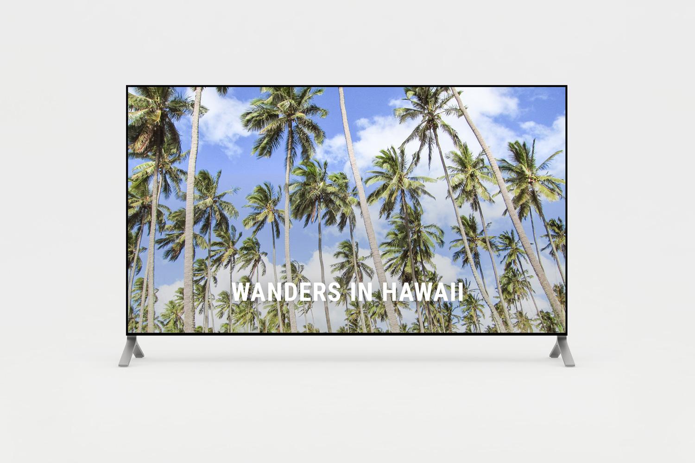 Short film of wanders in Hawaii