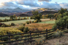 KimFossel IMG 2294-Landscape-runup1218