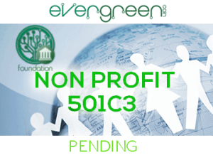 501C3 pending