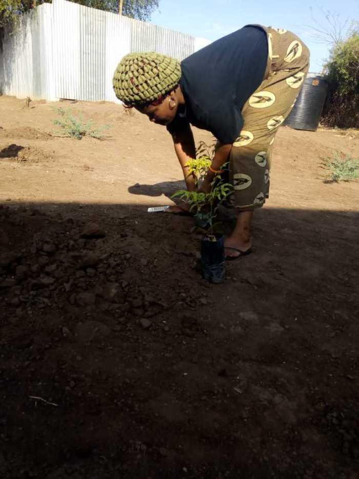 Kakuma 15