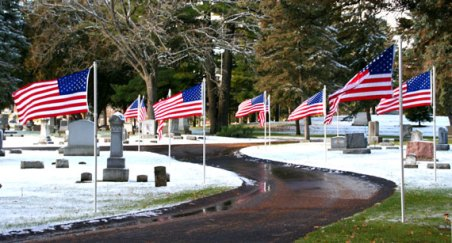 Parade of Flags on Veterans Day