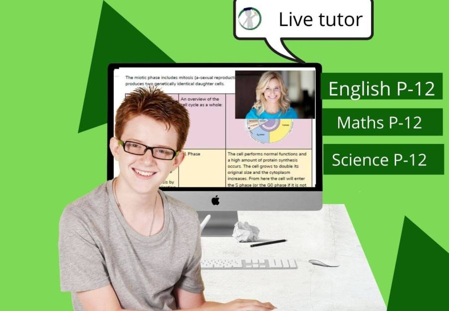 High school student in an online  tutoring lesson with his tutor.