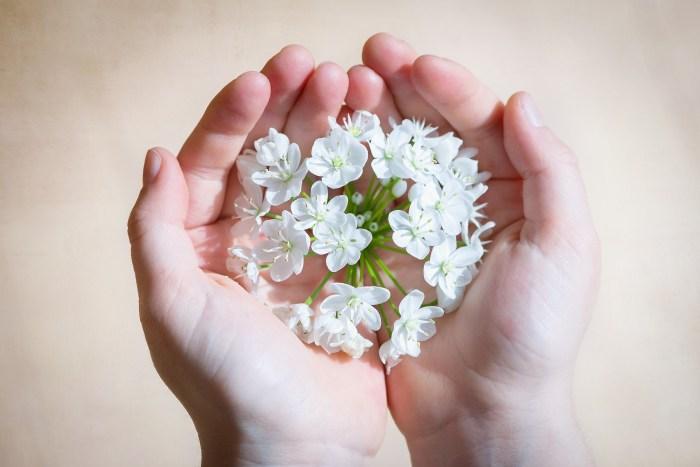 flower-1307578_1920