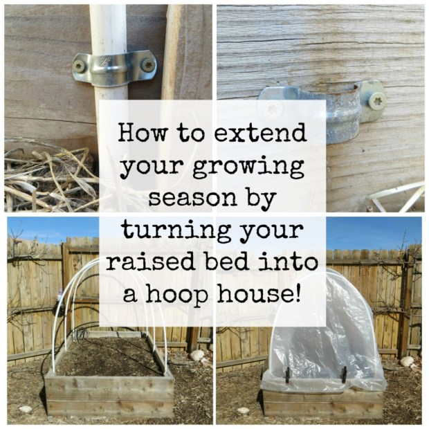How to extend your growing season by turning your raised bed into a hoop house