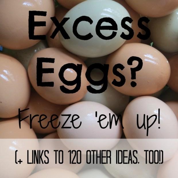Excess eggs-freeze em up