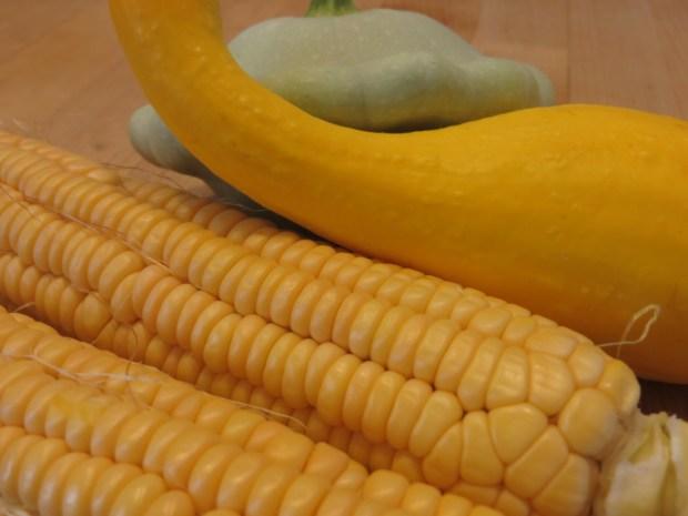 Corn and Squash Harvest