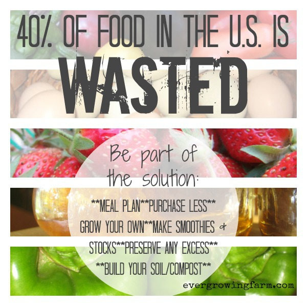 Food Waste - Solutions ::: Ever Growing Farm