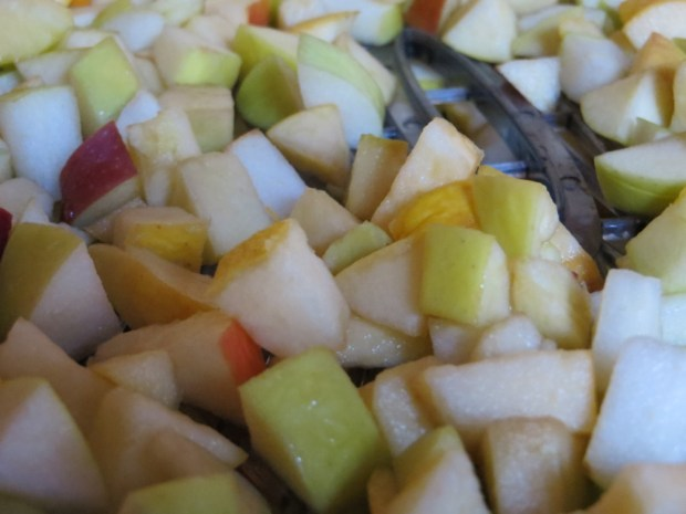 How to Dehydrate Old Apples