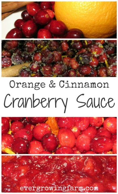 Super simple and absolutely delicious! Orange and Cinnamon Cranberry Sauce ::: Ever Growing Farm