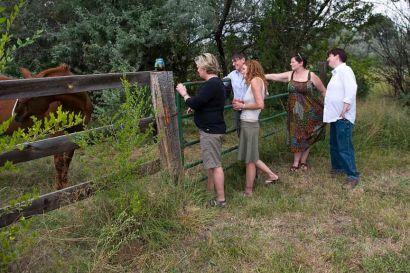 Visitng the horse