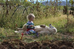 Ember and Akuna-October Garden