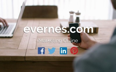 Integra tu empresa en Internet
