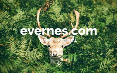 http://evernes.com – Marketing Digital