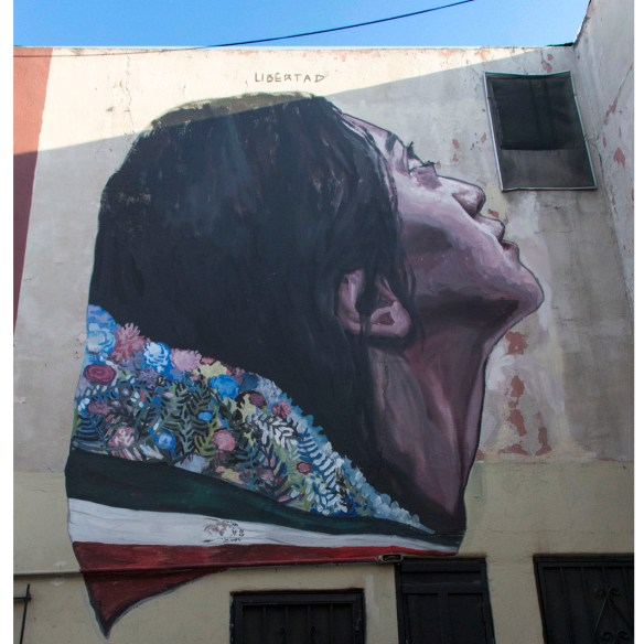 Metafora de la libertad_tijuana_mexico_instagram_2015
