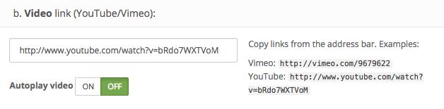 element_video