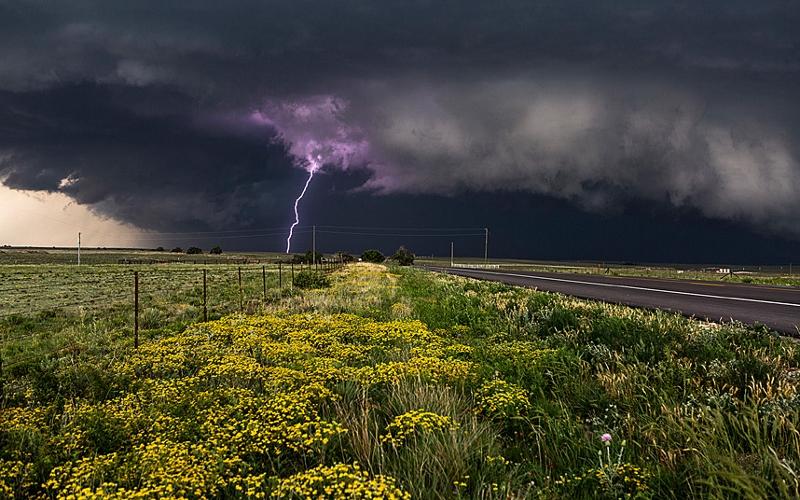 Image: Purple Lightning