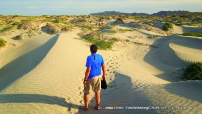 Image: starting into the dunes