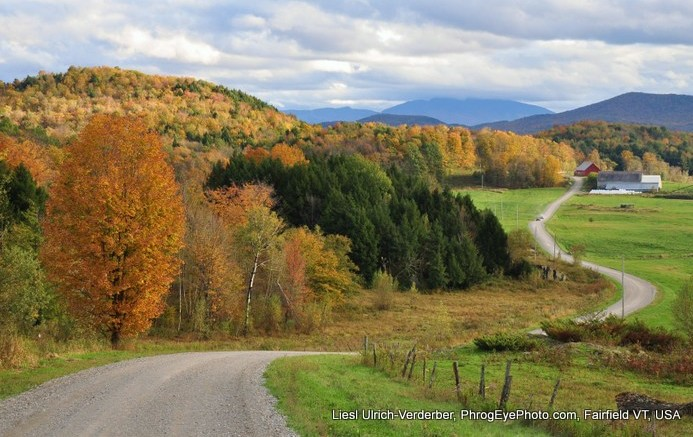 Image: Winding road in Vermont fall landscape