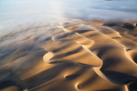Image: Undulating patterns of sand with fog sweeping over them