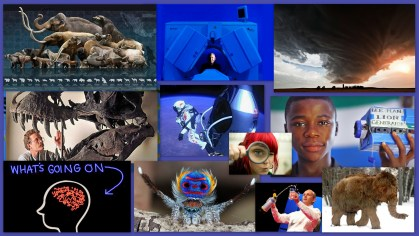 Collage no text SCIENCE