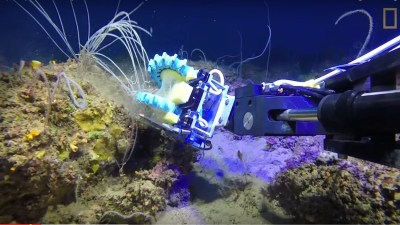 Image: Soft finger material on the end of a robotic arm try to grab a fragile seafloor plant