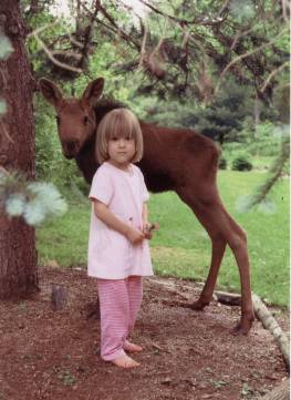 Image: A little girl with baby moose