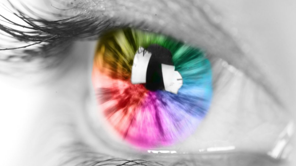 Image: A close up image of an eye, the skin is black and white, the eye is all colors of the rainbow