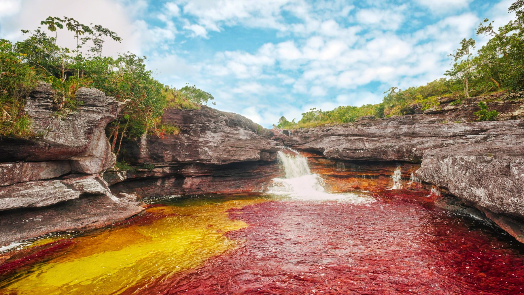 Image: Caño Cristales, also known as the Rainbow River, is one of the magnificent sites hidden in the outdoor world.