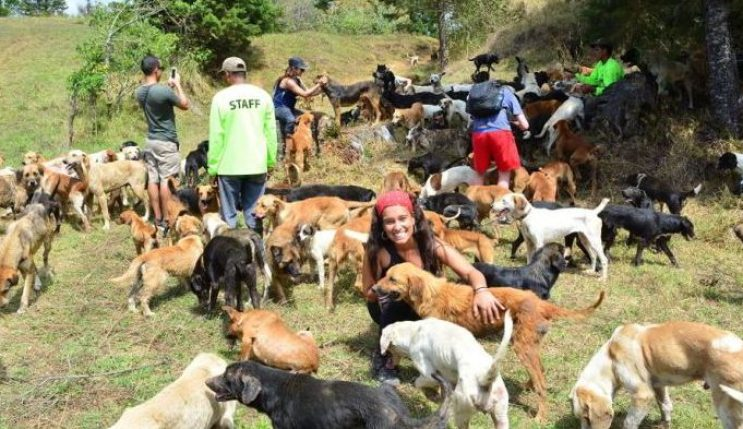 Image: Dogs and Volunteers at Territorio de Zaguates (land of the strays), Costa Rica