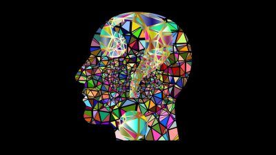 Image: A colorful collage in a silhouette of a human head