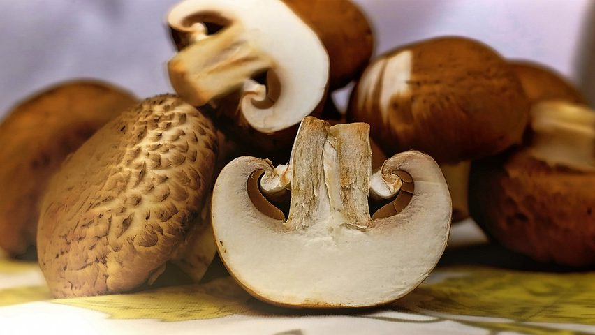 Image: cut up mushrooms