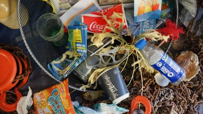 Image: Plastic waste mixed with sea rubbish
