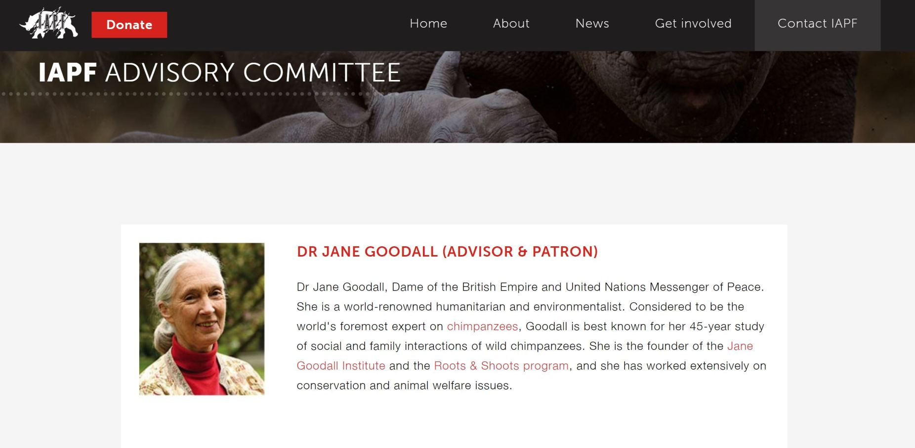 Image: A photo of the IAPF board member Jane Goodall