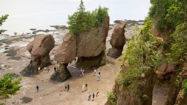 Image: a beach at very low tide with people dwarfed by huge rock formations