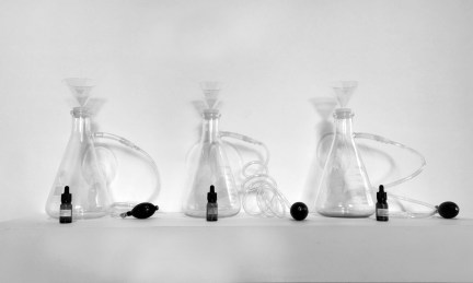 Image: 3 erlenmeyer flasks of scents lined up in a row