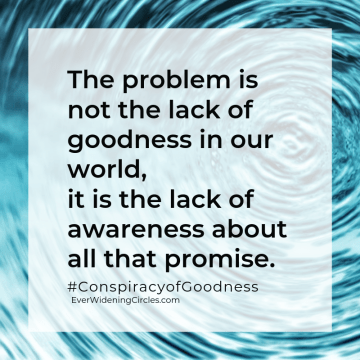 """Quote: """"The problem is not a lack of goodness in our world, it is the lack of awareness about all that promise."""" Conspiracy of Goodness #ConspiracyofGoodness EverWideningCircles.com"""