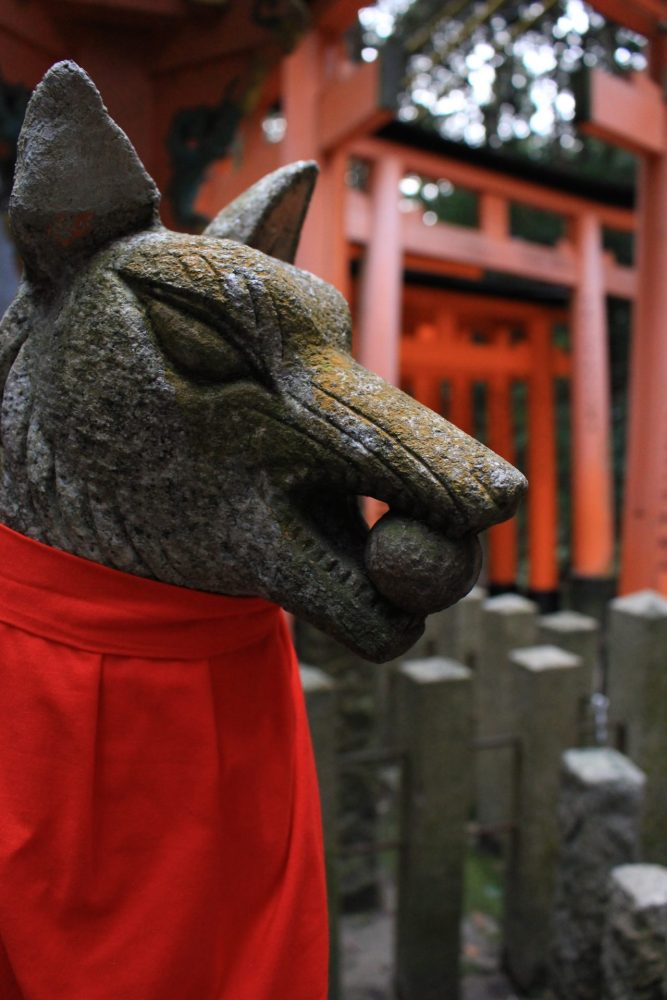 fushimi inari fox 667x1000 - A visit to Ryoanji Temple, Kinkaku Temple, & Fushimi Inari Shrine in Kyoto, Japan
