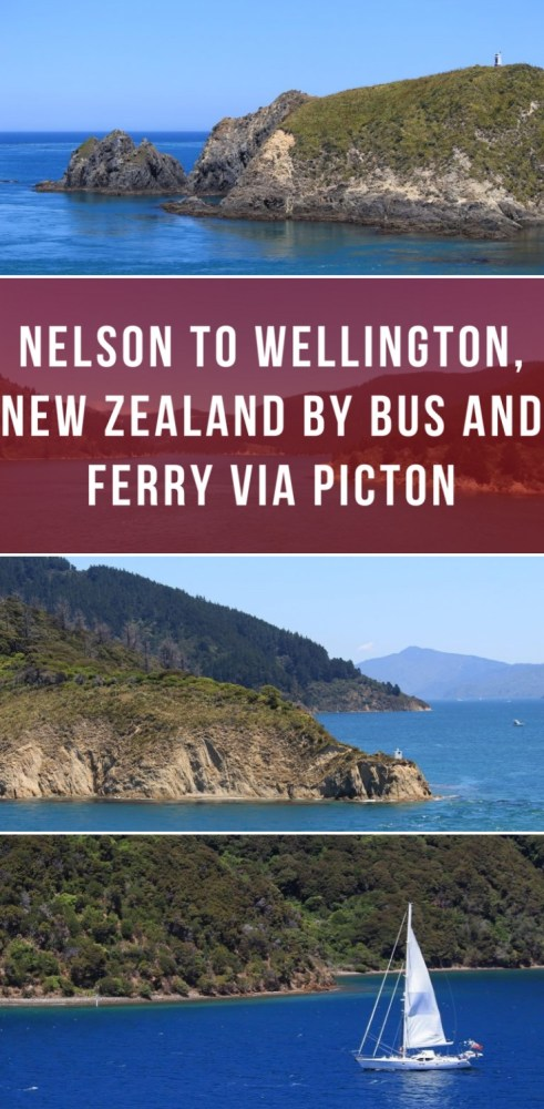 nelson to wellington new zealand by bus and ferry via picton 491x1000 - Nelson to Wellington, New Zealand by bus and ferry via Picton