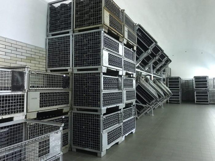 bohemia sekt winery storage racks 700x525 - A visit to the Bohemia Sekt winery in Pilsen, Czech Republic