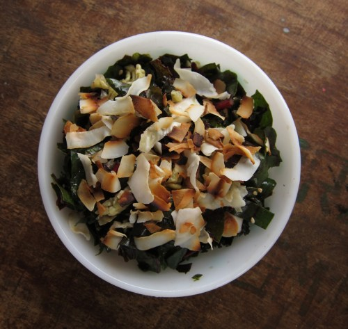 chard & nappa cabbage sesame coconut slaw | everybody likes sandwiches